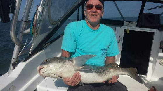 TISYL Fish Pic 3